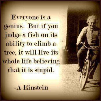 Everyone is a genius. but if you judge a fish on its ability to climb a tree, it will live its whole life believing that it is stupid.
