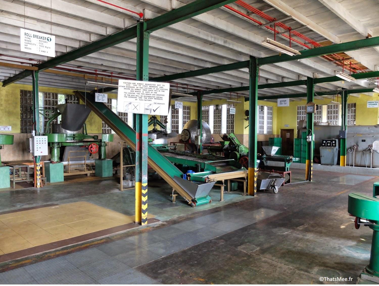 fabrique machines-outils usine de thé noir BOPF Sri-Lanka