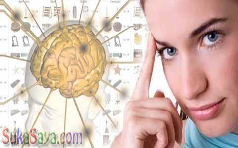 Makanan Dan Minuman Penambah Daya Ingat Otak