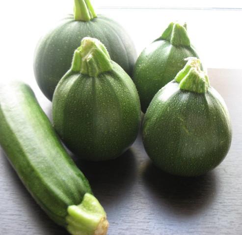 Zucchini and Summer Squash Recipes