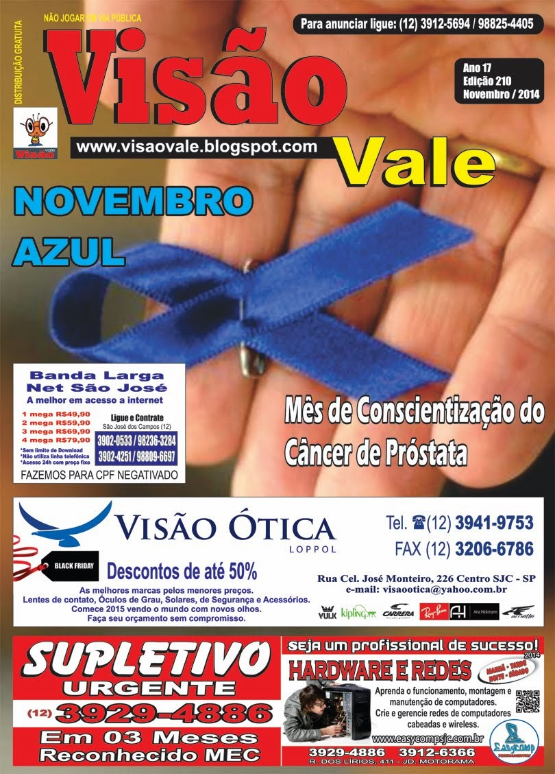 Revista Visão Vale Novembro