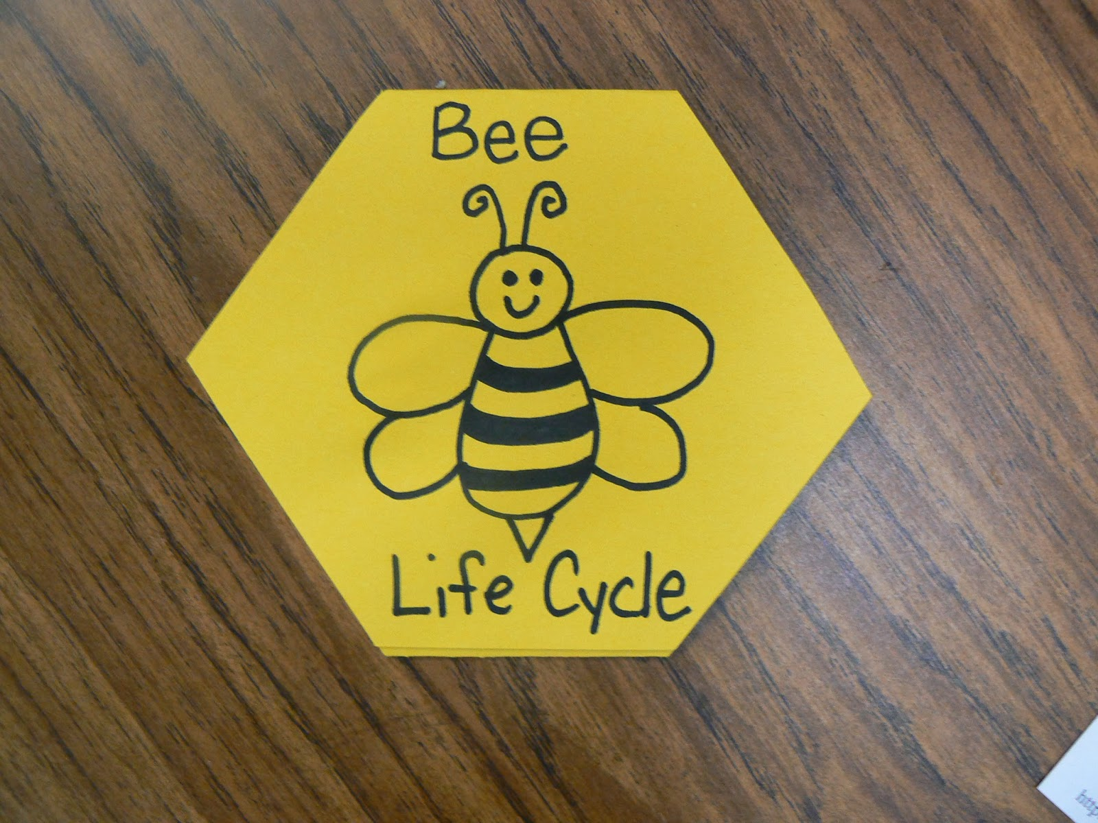 Mrs. T\'s First Grade Class: Busy Buzzy Bee Books