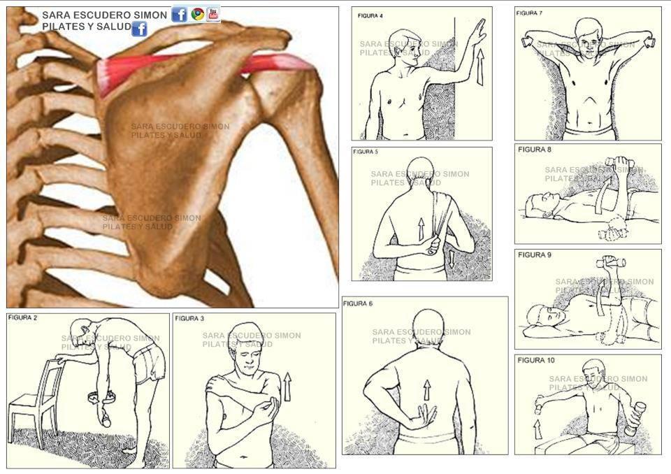 мелкая травма плеча при жиме лежа график