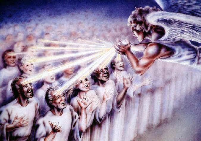 The True Jehovahs Witnesses Revelation 7. The True