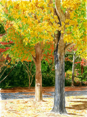 Fall Leaves,Dalton, GA by George Davies