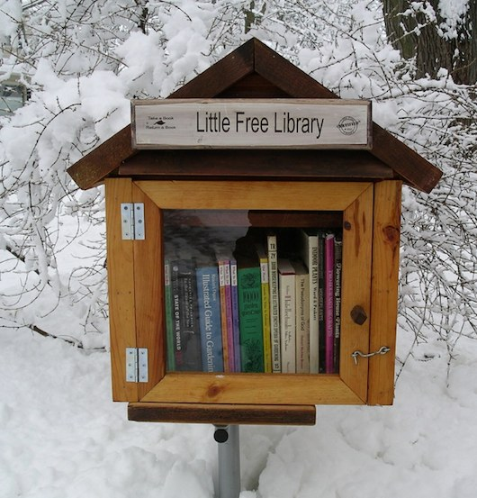 Plans For Building Tiny Free Libraries