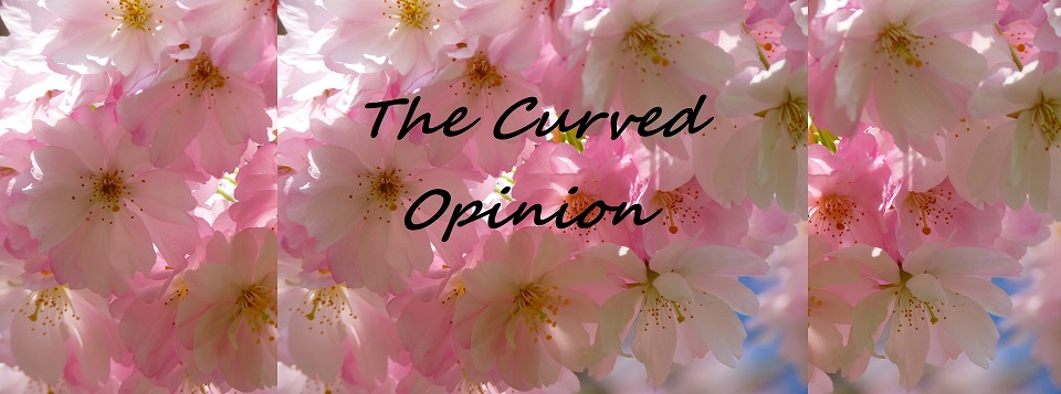 The Curved Opinion