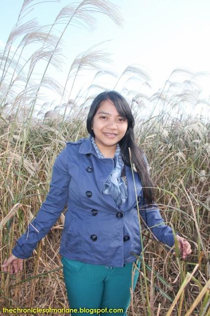 korea blogger