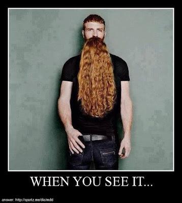 Longest red beard ever? Or, beautiful redhead facing man?