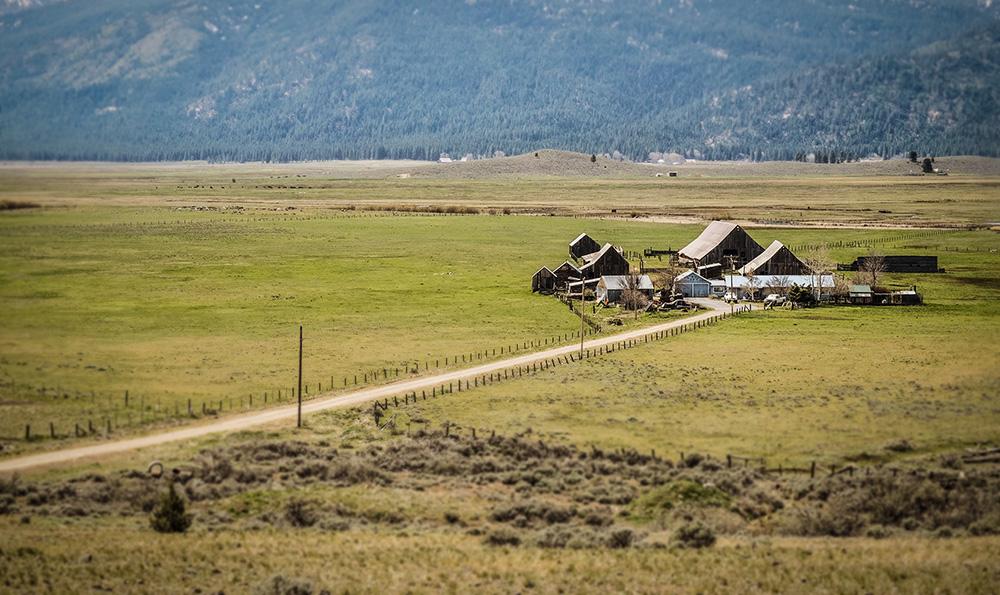 Sierraville open landscape