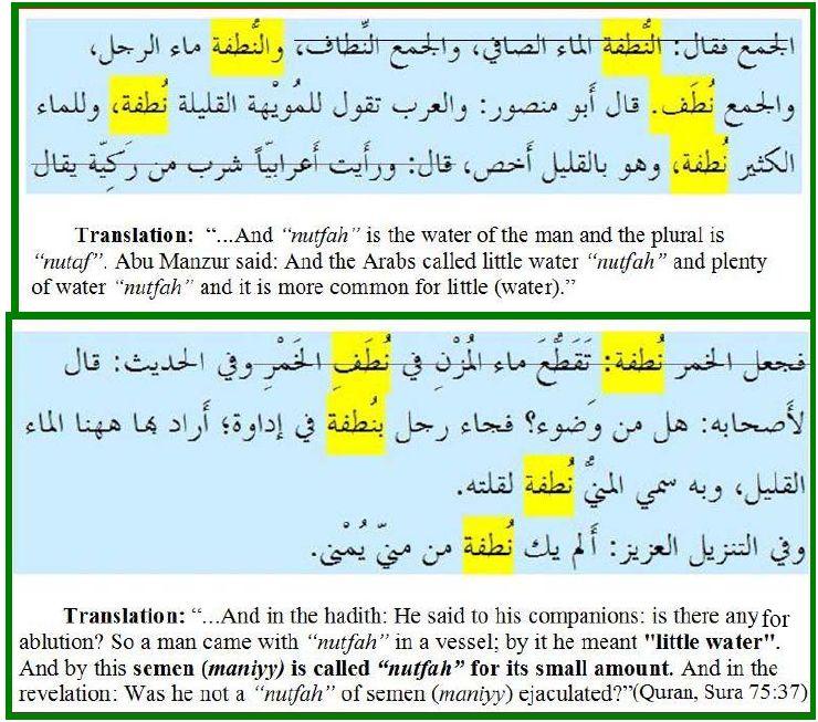 Anwar Bilals Blog Hamza Tzortzis on Nutfah