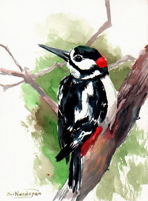 https://www.etsy.com/listing/173714132/woodpecker-original-watercolor-painting?ref=favs_view_3
