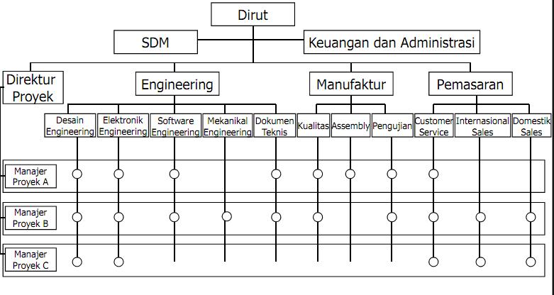 Contoh Organisasi Matrix