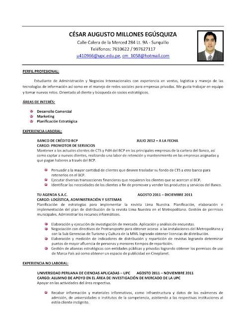Curriculum Vitae: Curriculum Vitae Blog