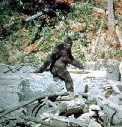 Bigfoot 1967