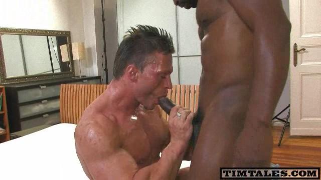 Big Dick Porn - Free Download Gay Videos