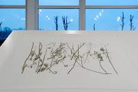 Richard Müller: dessin sur papier calque