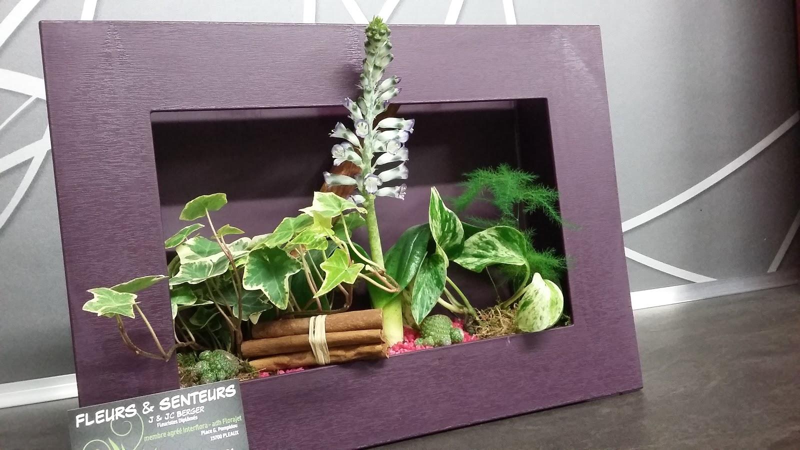 Fleurs et senteurs composition de plantes int rieur et for Plante interieur et exterieur