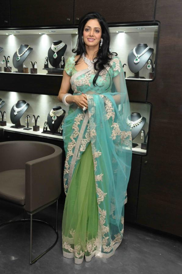 Bollywood Actress Sridevi Hot Saree Photos