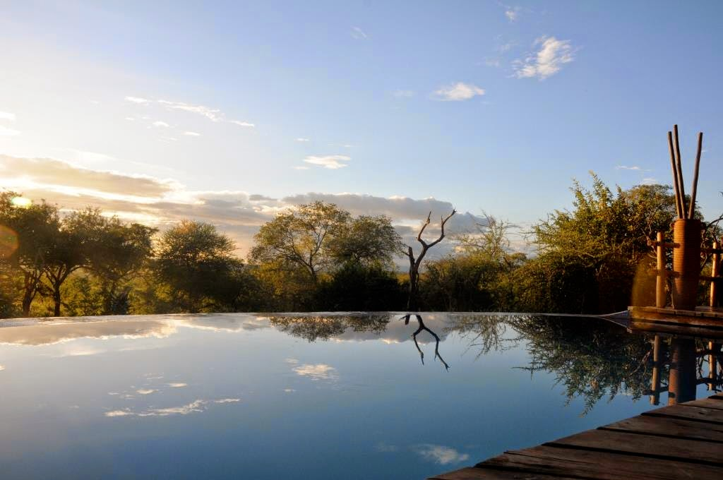 Tangarire Treetops lodge, Tanzania, Afrika, Oost-Afrika, luxelodges, Afrikaanse lodges, infinity zwembad, Afrikaanse wildernis,
