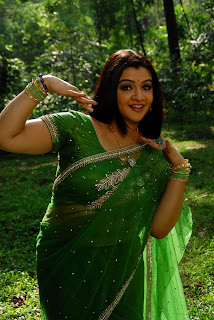 Aarthi Agarwal in Green Saree Picture Gallery