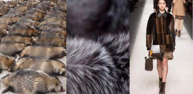 Η γούνα και η μόδα στον πλανήτη και στο μέλλον