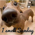 Μυρίζομαι Κυριακή...