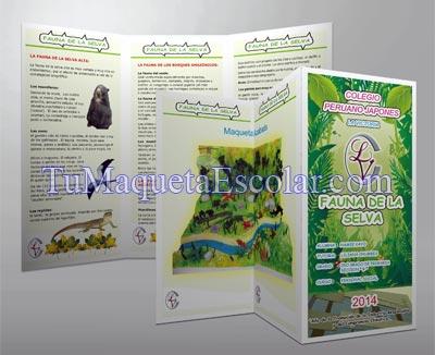 folleto informativo para exposicion.