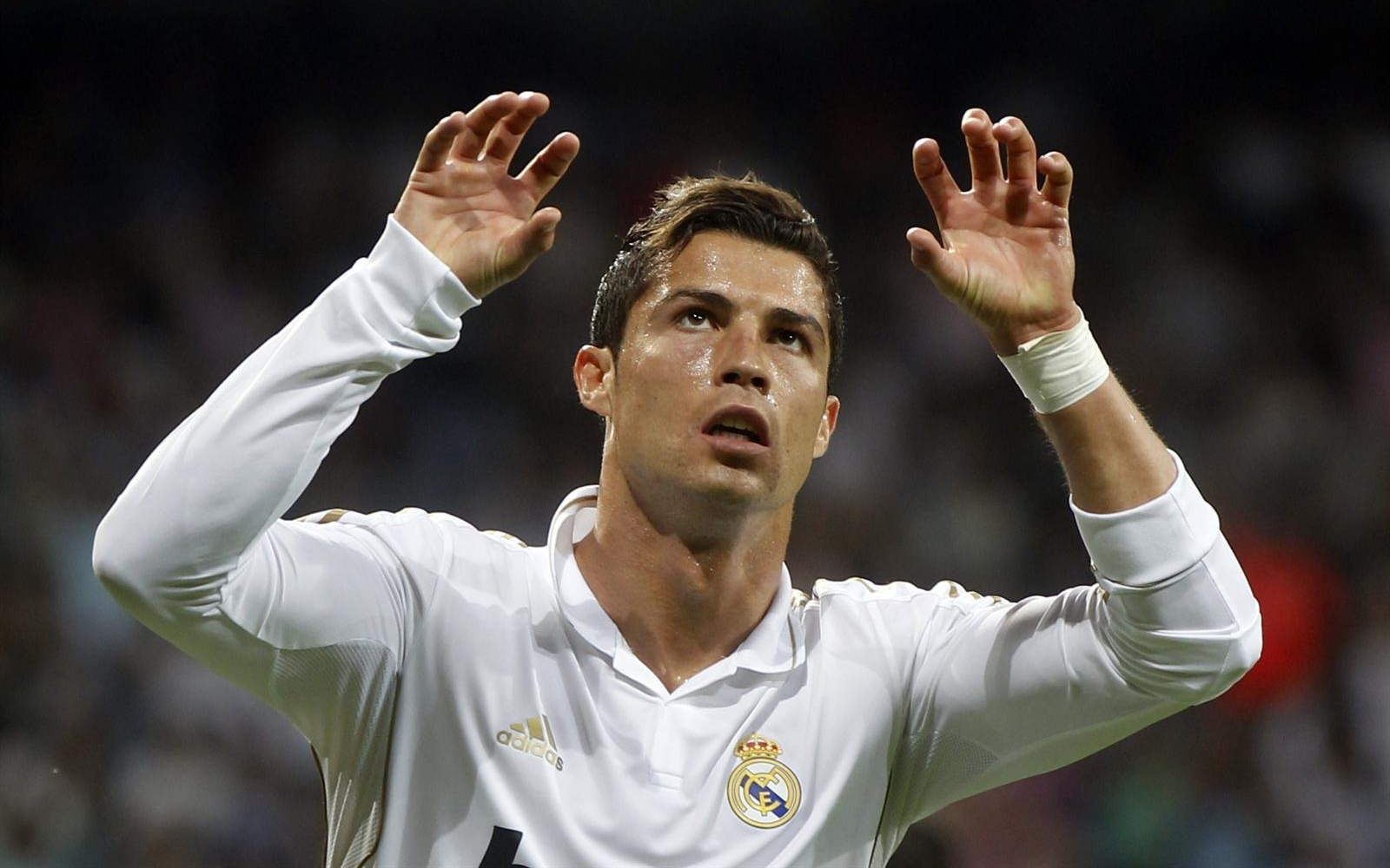 Displaying 14> Images For - Cr7 Celebration...