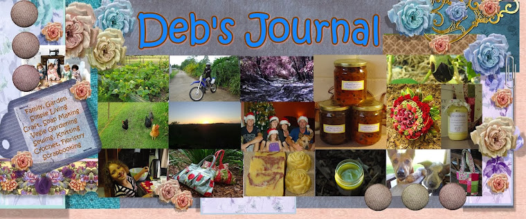 Deb's Daily Journal