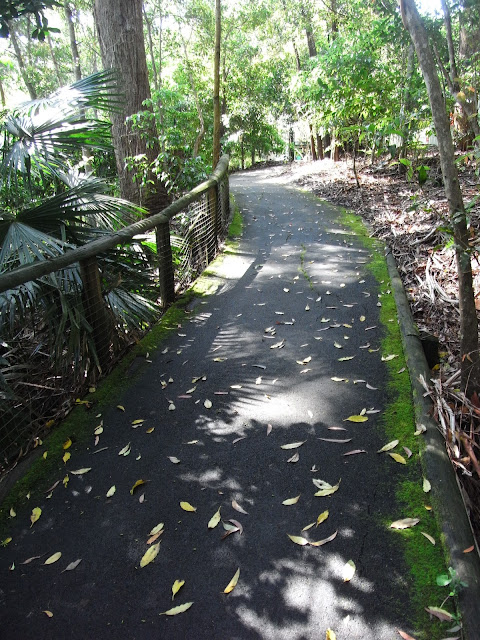 Path through Booderee Botanical Gardens