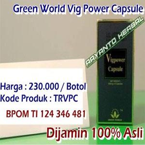 agen obat vig power capsule