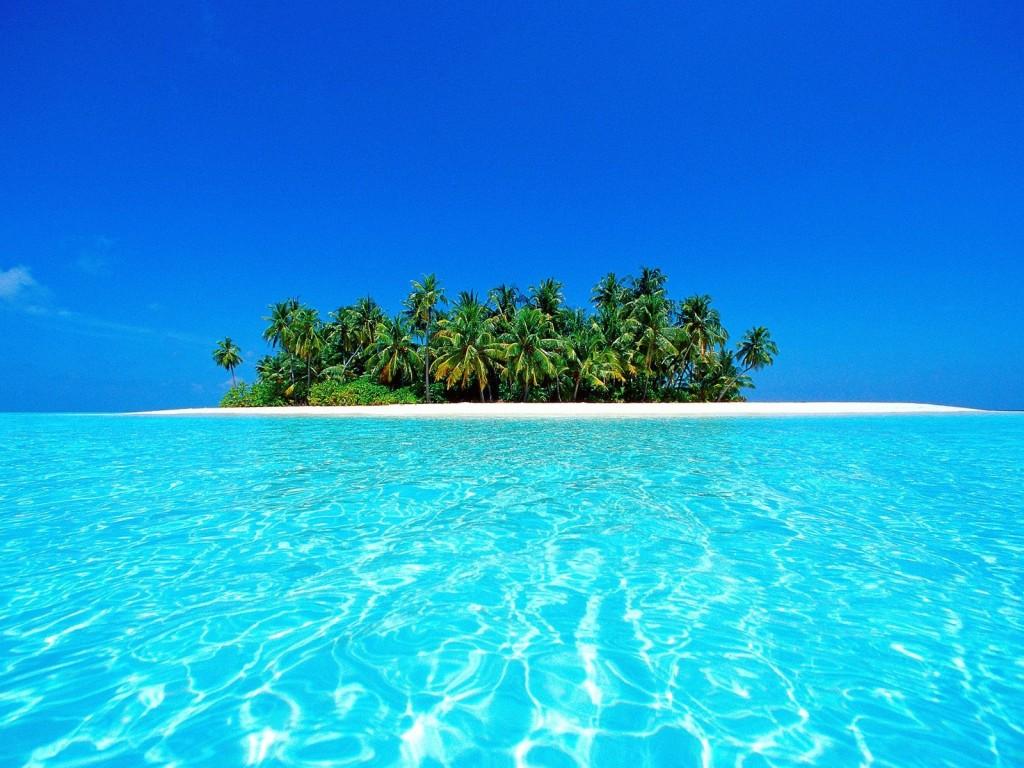 http://4.bp.blogspot.com/-adr9vlcLcDU/TnMFJgovqII/AAAAAAAANFY/9jmqXZtDGw8/s1600/oceano-1024x768-verano.jpg