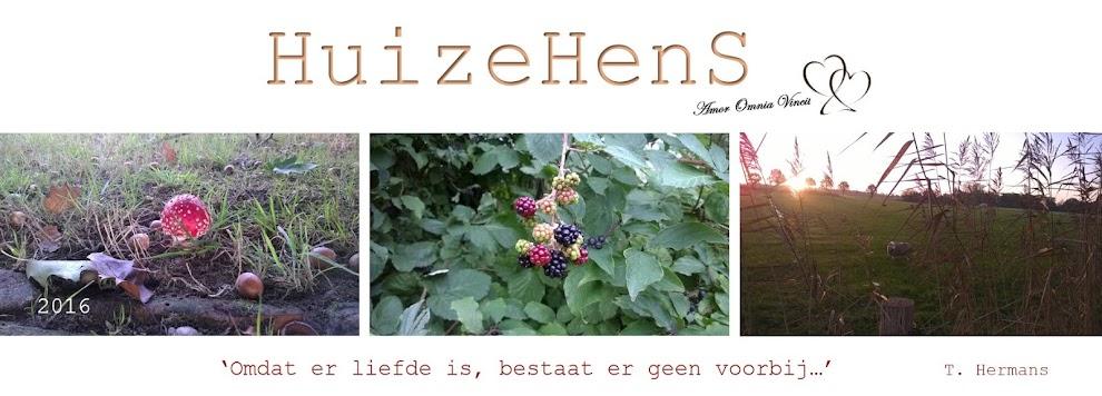 Huize HenS