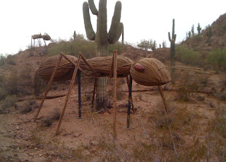 25' long ants invade the Saguaro forest