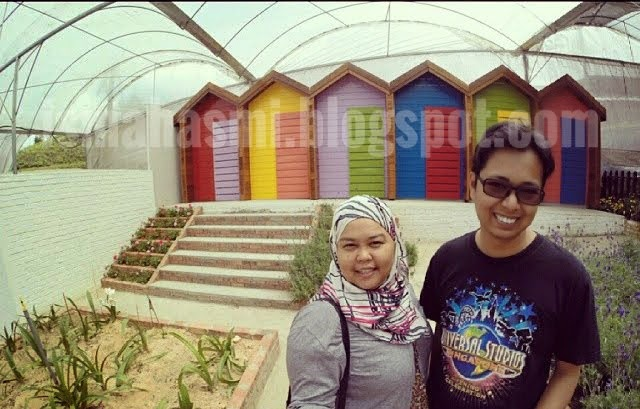 Cameron Highlands June 2014