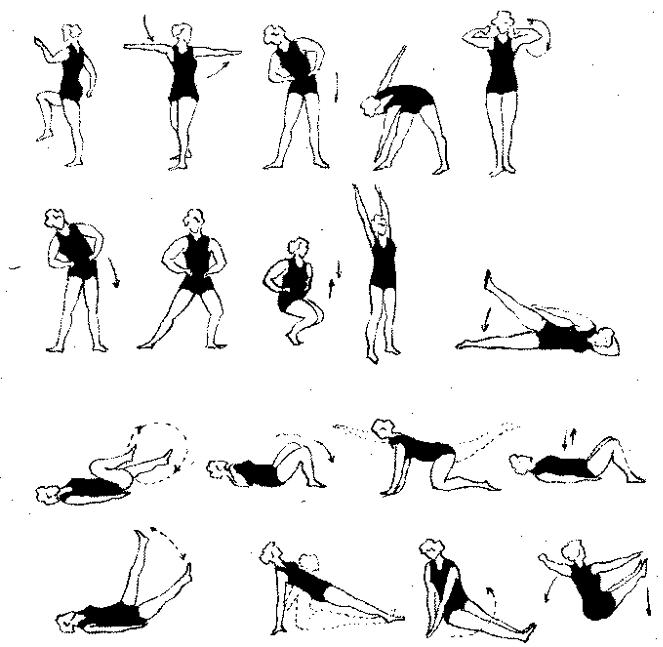 Примерный комплекс упражнений