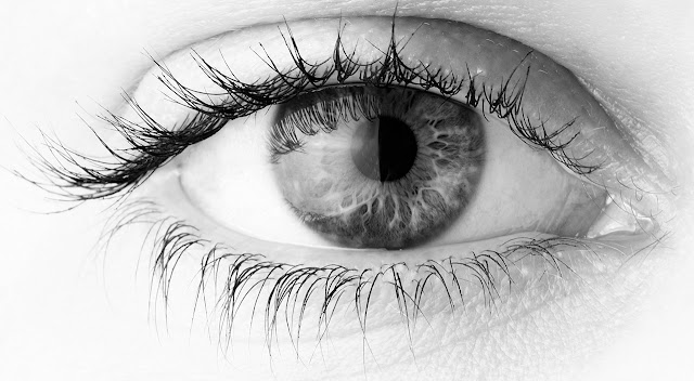 Top 5  Foods For Healthy Eyes And Better Vision