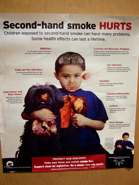 the harmful effects of second hand smoke Second hand smoke second hand smoke occurs when someone uses and exhales tobacco products such as cigarettes, cigars, or pipes, and the smoke is then inhaled.