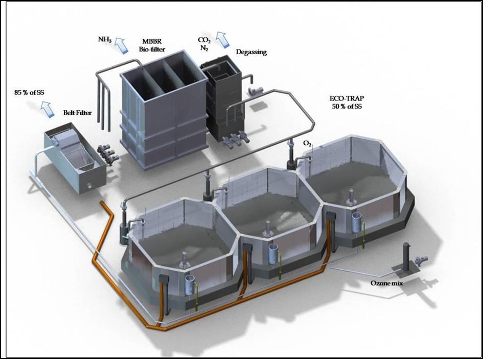 Узв для выращивания рыбы схема оборудования своими руками