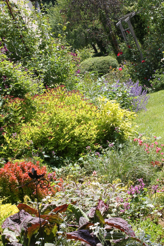 Mes motsdoubs tour de jardin en cette fin mai for Jardin mai 2015