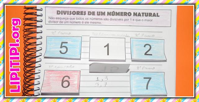 Atividade Interativa Divisores de um Número Natural Números Primos e Compostos