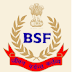 Directorate General BSF Group B & C Recruitment 2013 www.bsf.nic.in 249 SI and HC Posts