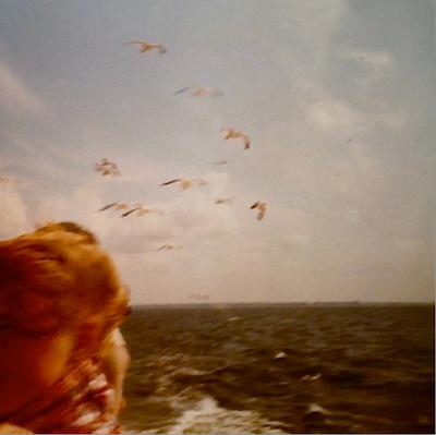 Möven,, Meer und ein zerzauster Haarschopf