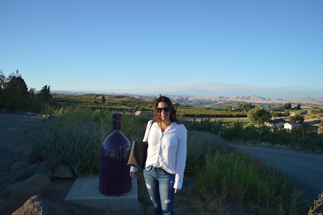 Naches Heights Vineyard. Yakima, WA