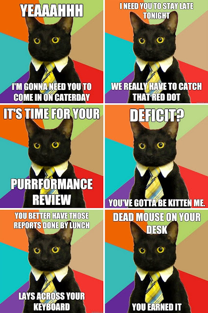 Business Cat, meme
