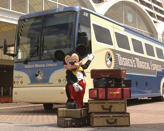 como funciona Magical Express