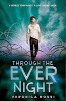 https://www.goodreads.com/book/show/13253276-through-the-ever-night