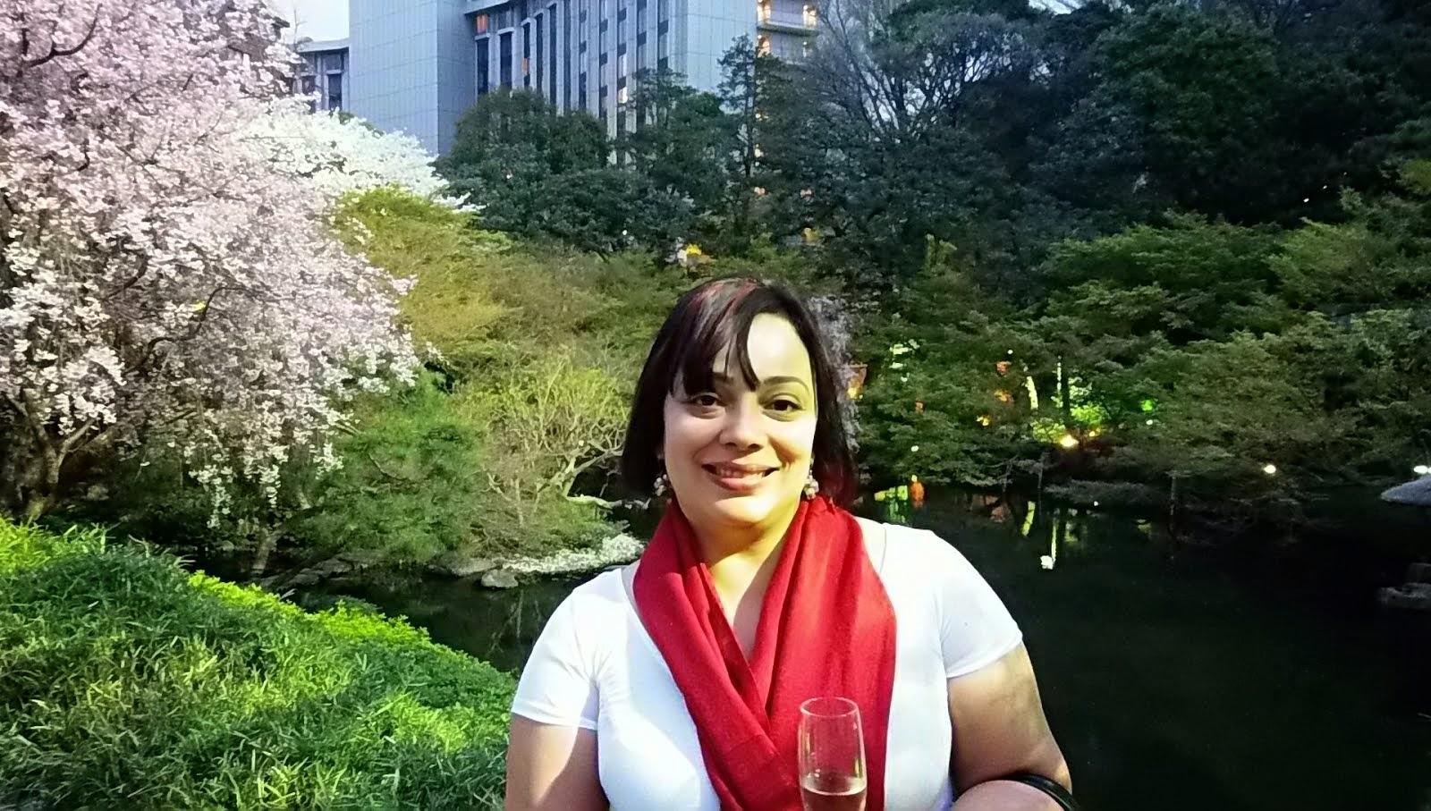 Japón 2013