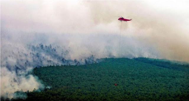104 Personil Asing Ikut Padamkan Api di Sumsel